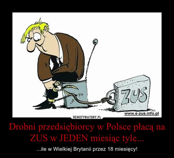 Drobni przedsiębiorcy w Polsce płacą na ZUS w JEDEN miesiąc tyle... – ...ile w Wielkiej Brytanii przez 18 miesięcy!