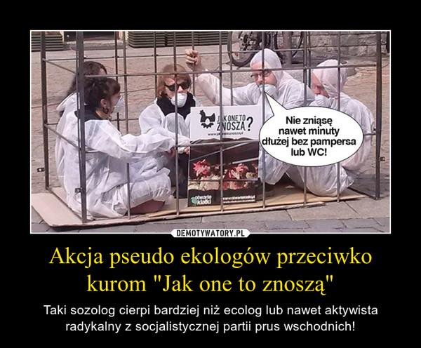"""Akcja pseudo ekologów przeciwko kurom """"Jak one to znoszą"""" – Taki sozolog cierpi bardziej niż ecolog lub nawet aktywista radykalny z socjalistycznej partii prus wschodnich!"""