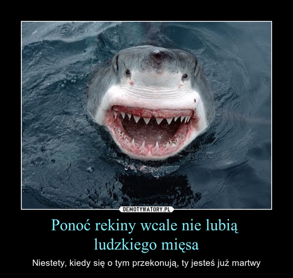 Ponoć rekiny wcale nie lubią ludzkiego mięsa – Niestety, kiedy się o tym przekonują, ty jesteś już martwy