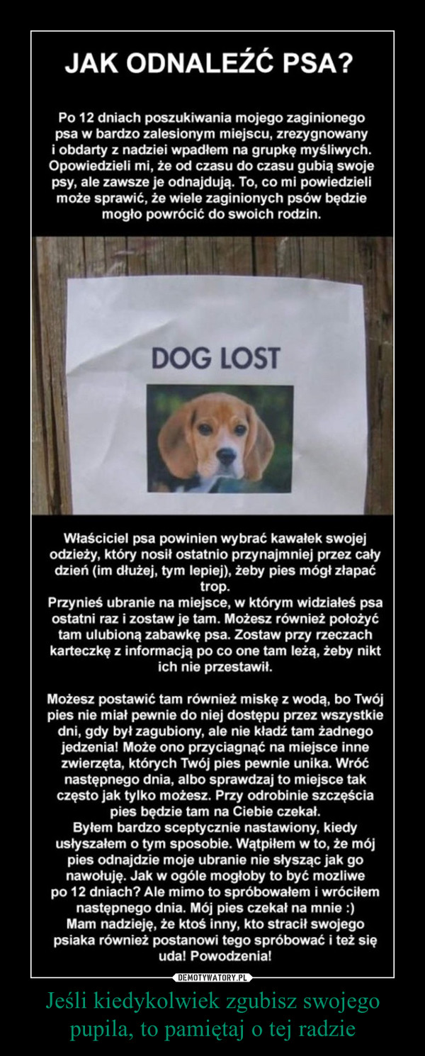 Jeśli kiedykolwiek zgubisz swojego pupila, to pamiętaj o tej radzie –  JAK ODNALEŹĆ PSA? Po 12 dniach poszukiwania mojego zaginionego psa w bardzo zalesionym miejscu, zrezygnowany i obdarty z nadziei wpadłem na grupkę myśliwych. Opowiedzieli mi, że od czasu do czasu gubią swoje psy, ale zawsze je odnajdują. To, co mi powiedzieli może sprawić, że wiele zaginionych psów będzie mogło powrócić do swoich rodzin. Właściciel psa powinien wybrać kawałek swojej odzieży, który nosił ostatnio przynajmniej przez cały dzień (im dłużej, tym lepiej), żeby pies mógł złapać trop. Przynieś ubranie na miejsce, w którym widziałeś psa ostatni raz i zostaw je tam. Możesz również położyć tam ulubioną zabawkę psa. Zostaw przy rzeczach karteczkę z informacją po co one tam leżą, żeby nikt ich nie przestawił. Możesz postawić tam również miskę z wodą, bo Twój pies nie miał pewnie do niej dostępu przez wszystkie dni, gdy był zagubiony, ale nie kładź tam żadnego jedzenia! Może ono przyciagnąć na miejsce inne zwierzęta, których Twój pies pewnie unika. Wróć następnego dnia, albo sprawdzaj to miejsce tak często jak tylko możesz. Przy odrobinie szczęścia pies będzie tam na Ciebie czekał. Byłem bardzo sceptycznie nastawiony, kiedy usłyszałem o tym sposobie. Wątpiłem w to, że mój pies odnajdzie moje ubranie nie słysząc jak go nawołuję. Jak w ogóle mogłoby to być mozliwe po 12 dniach? Ale mimo to spróbowałem i wróciłem następnego dnia. Mój pies czekał na mnie :) Mam nadzieję, że ktoś inny, kto stracił swojego psiaka również postanowi tego spróbować i też się uda! Powodzenia!