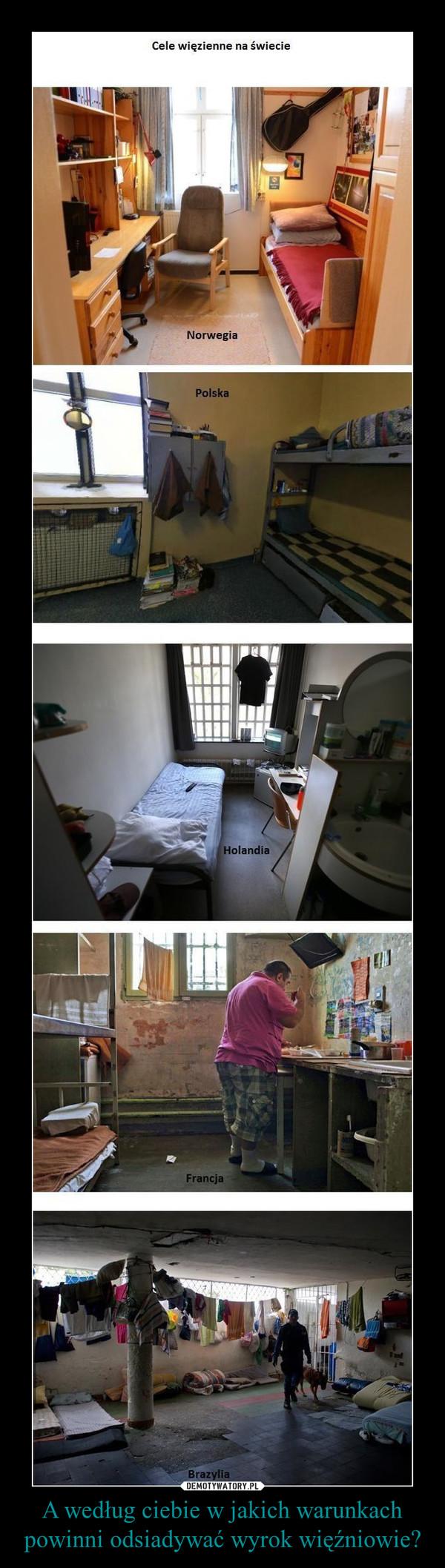 A według ciebie w jakich warunkach powinni odsiadywać wyrok więźniowie? –