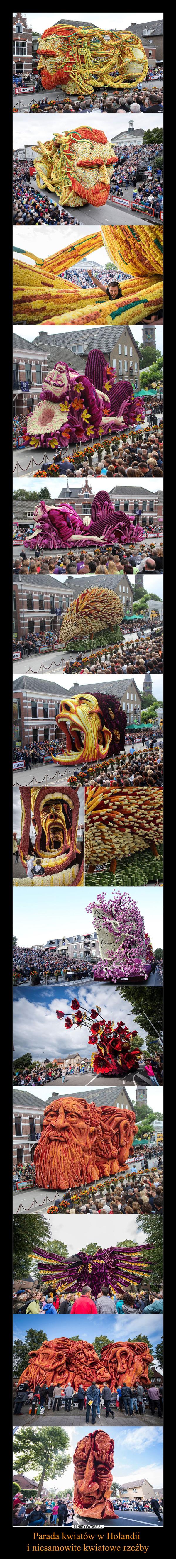 Parada kwiatów w Holandii i niesamowite kwiatowe rzeźby –
