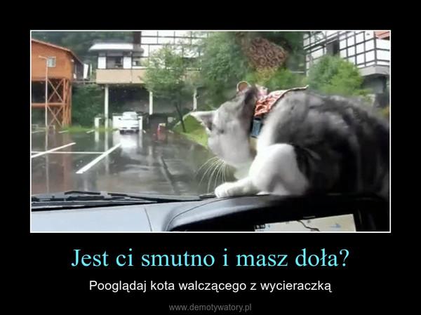 Jest ci smutno i masz doła? – Pooglądaj kota walczącego z wycieraczką