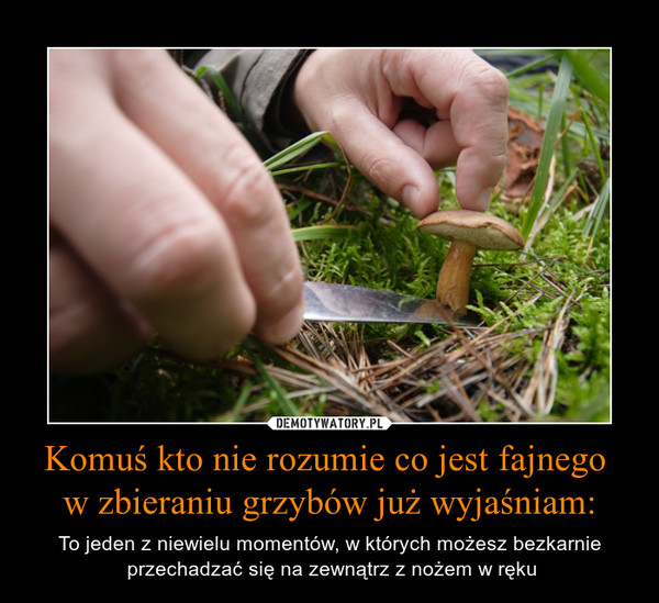 Komuś kto nie rozumie co jest fajnego w zbieraniu grzybów już wyjaśniam: – To jeden z niewielu momentów, w których możesz bezkarnie przechadzać się na zewnątrz z nożem w ręku
