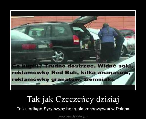 Tak jak Czeczeńcy dzisiaj – Tak niedługo Syryjczycy będą się zachowywać w Polsce