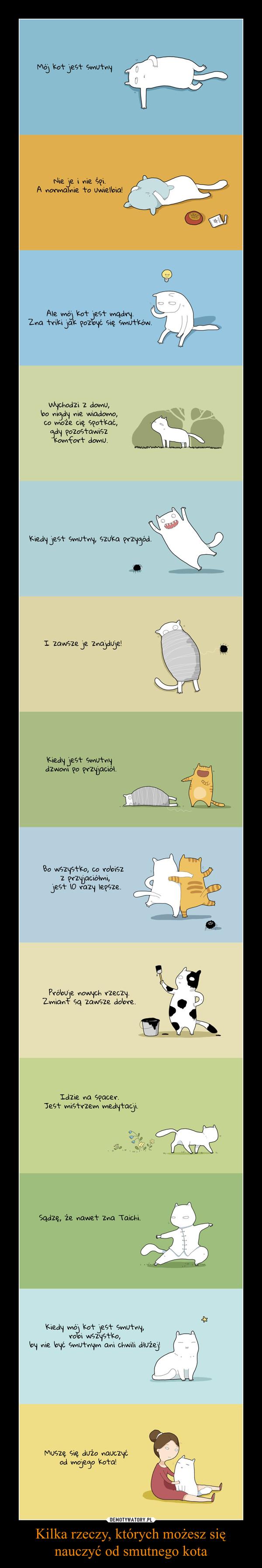 Kilka rzeczy, których możesz się nauczyć od smutnego kota –