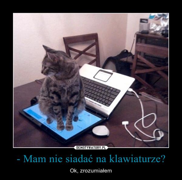 - Mam nie siadać na klawiaturze? – Ok, zrozumiałem