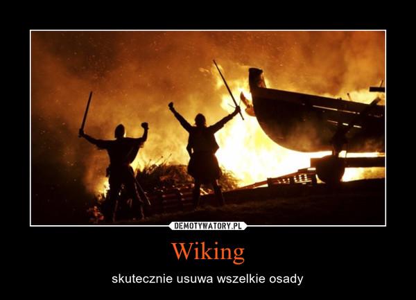 Wiking – skutecznie usuwa wszelkie osady
