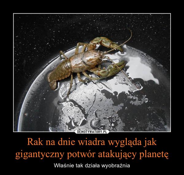 Rak na dnie wiadra wygląda jak gigantyczny potwór atakujący planetę – Właśnie tak działa wyobraźnia