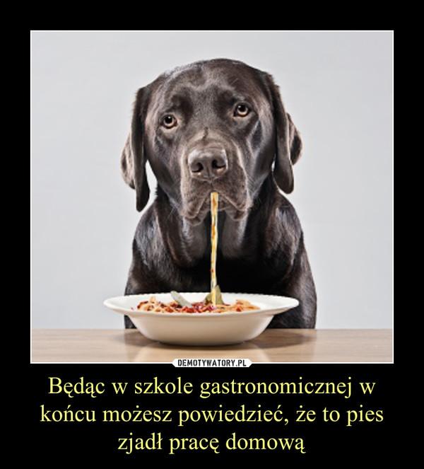 Będąc w szkole gastronomicznej w końcu możesz powiedzieć, że to pies zjadł pracę domową –