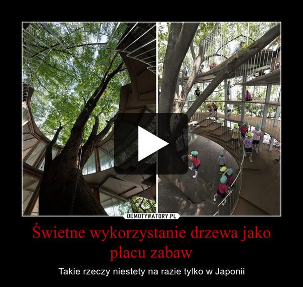Świetne wykorzystanie drzewa jako placu zabaw – Takie rzeczy niestety na razie tylko w Japonii