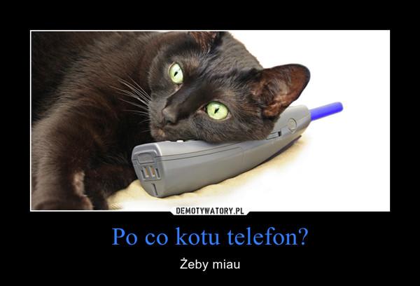 Po co kotu telefon? – Żeby miau