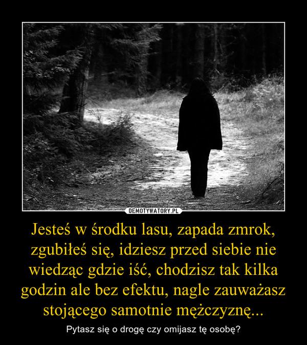 Jesteś w środku lasu, zapada zmrok, zgubiłeś się, idziesz przed siebie nie wiedząc gdzie iść, chodzisz tak kilka godzin ale bez efektu, nagle zauważasz stojącego samotnie mężczyznę... – Pytasz się o drogę czy omijasz tę osobę?