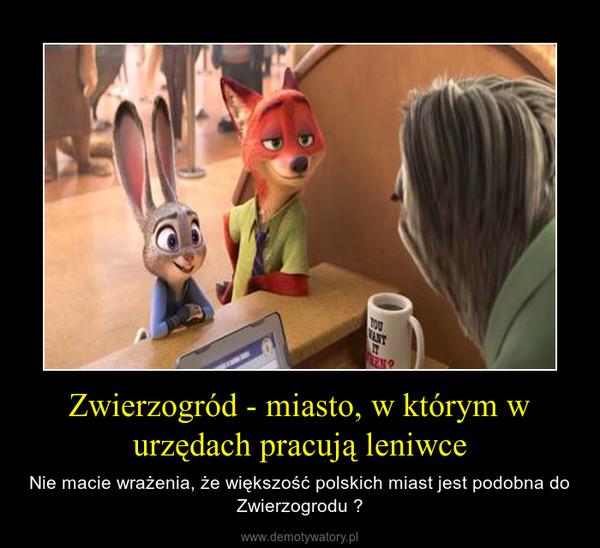 Zwierzogród - miasto, w którym w urzędach pracują leniwce – Nie macie wrażenia, że większość polskich miast jest podobna do Zwierzogrodu ?