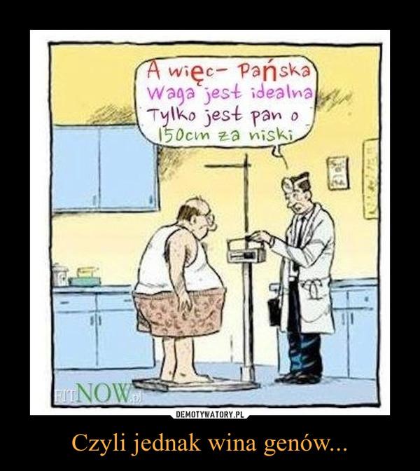 Czyli jednak wina genów... –