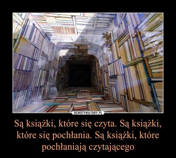 Są książki, które się czyta. Są książki, które się pochłania. Są książki, które pochłaniają czytającego –