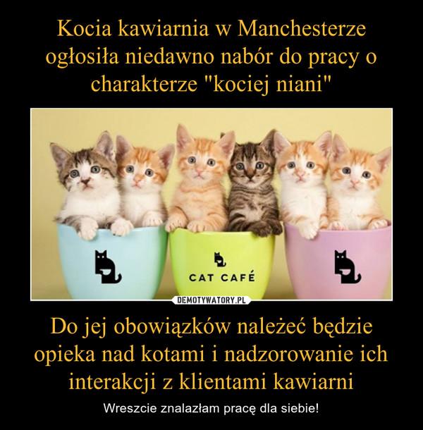 Do jej obowiązków należeć będzie opieka nad kotami i nadzorowanie ich interakcji z klientami kawiarni – Wreszcie znalazłam pracę dla siebie!