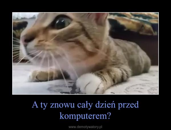 A ty znowu cały dzień przed komputerem? –
