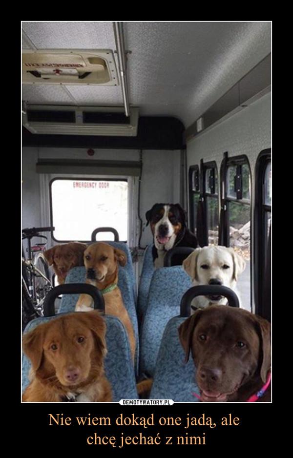Nie wiem dokąd one jadą, ale chcę jechać z nimi –