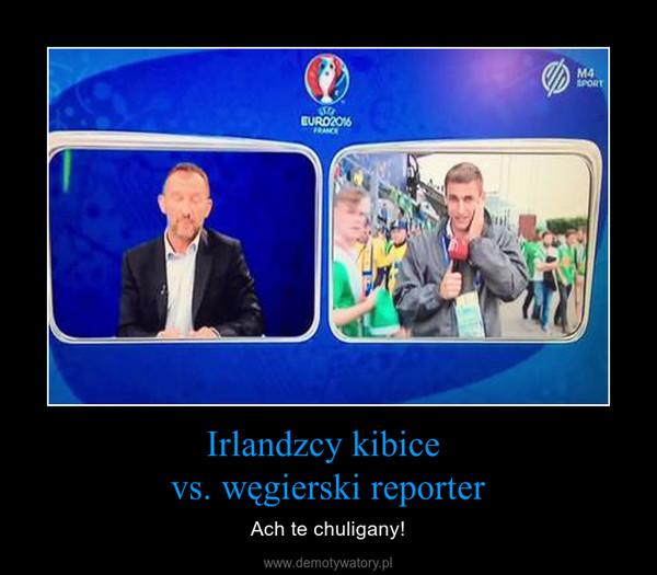 Irlandzcy kibice vs. węgierski reporter – Ach te chuligany!