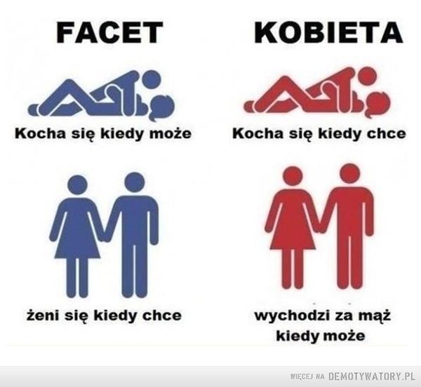 Facet vs. kobieta –
