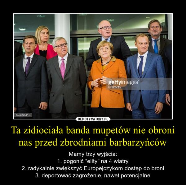 """Ta zidiociała banda mupetów nie obroni nas przed zbrodniami barbarzyńców – Mamy trzy wyjścia:1. pogonić """"elity"""" na 4 wiatry2. radykalnie zwiększyć Europejczykom dostęp do broni3. deportować zagrożenie, nawet potencjalne"""