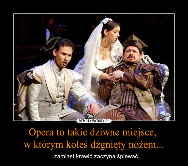 Opera to takie dziwne miejsce, w którym koleś dźgnięty nożem... – ...zamiast krawić zaczyna śpiewać