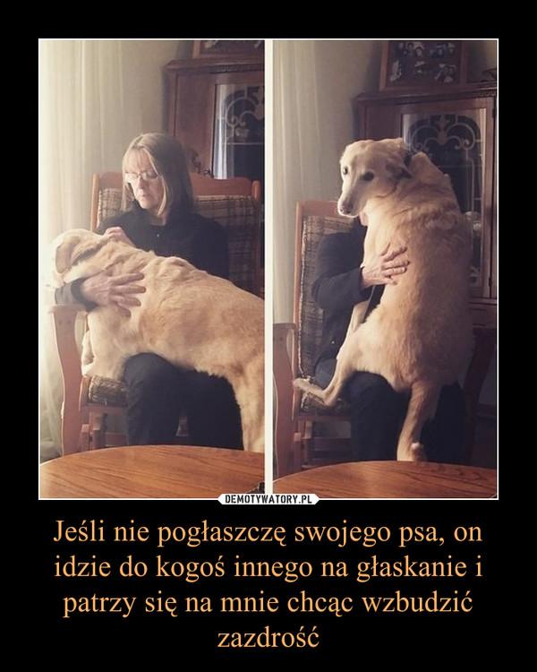 Jeśli nie pogłaszczę swojego psa, on idzie do kogoś innego na głaskanie i patrzy się na mnie chcąc wzbudzić zazdrość –