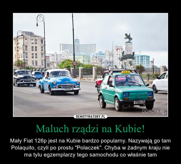 """Maluch rządzi na Kubie! – Mały Fiat 126p jest na Kubie bardzo popularny. Nazywają go tam Polaquito, czyli po prostu """"Polaczek"""". Chyba w żadnym kraju nie ma tylu egzemplarzy tego samochodu co właśnie tam"""