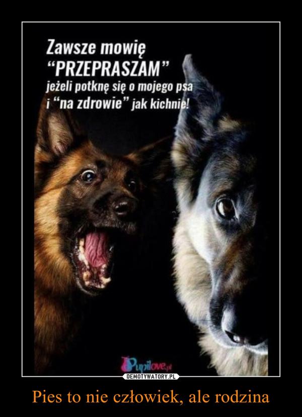 Pies to nie człowiek, ale rodzina –