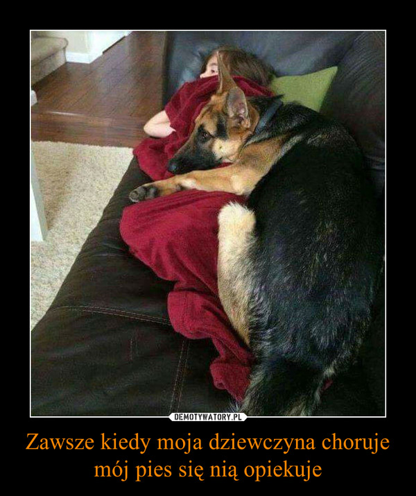 Zawsze kiedy moja dziewczyna choruje mój pies się nią opiekuje –