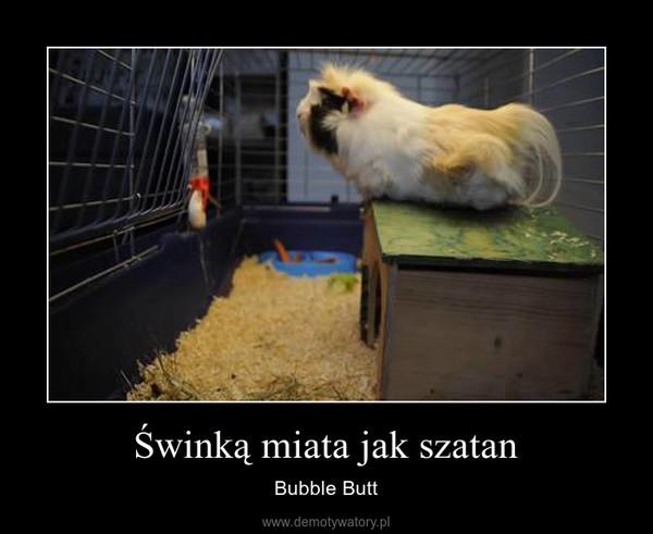 Świnką miata jak szatan – Bubble Butt