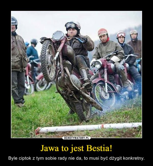 Jawa to jest Bestia! – Byle ciptok z tym sobie rady nie da, to musi być dżygit konkretny.