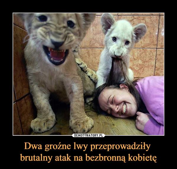 Dwa groźne lwy przeprowadziły brutalny atak na bezbronną kobietę –