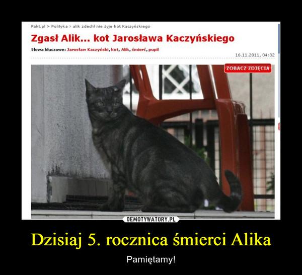 Dzisiaj 5. rocznica śmierci Alika – Pamiętamy! Zgasł Alik... kot Jarosława Kaczyńskiego