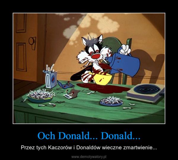 Och Donald... Donald... – Przez tych Kaczorów i Donaldów wieczne zmartwienie...