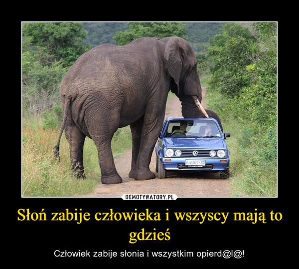 Słoń zabije człowieka i wszyscy mają to gdzieś – Człowiek zabije słonia i wszystkim opierd@l@!