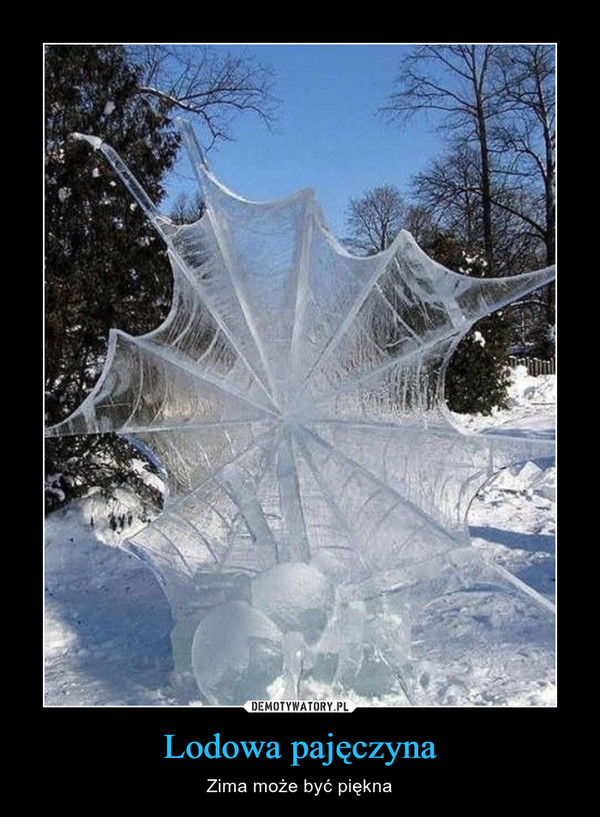 Lodowa pajęczyna – Zima może być piękna
