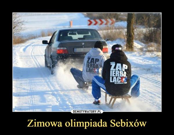 Zimowa olimpiada Sebixów –