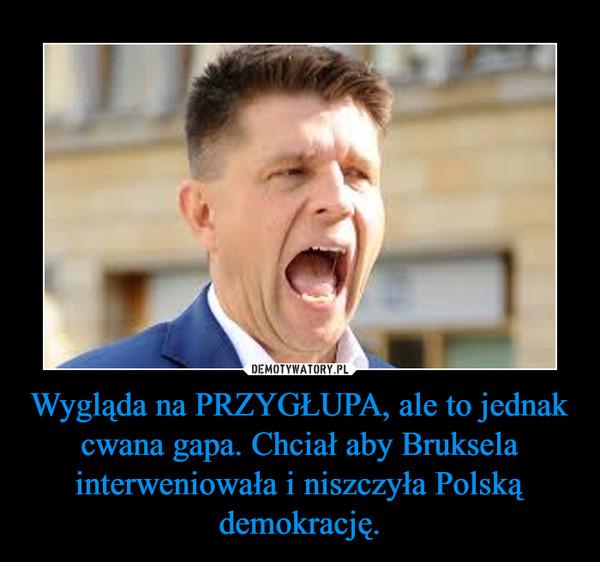 Wygląda na PRZYGŁUPA, ale to jednak cwana gapa. Chciał aby Bruksela interweniowała i niszczyła Polską demokrację. –