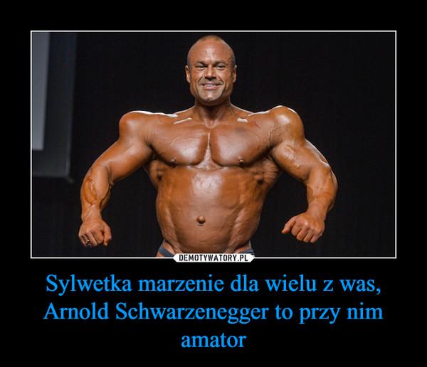 Sylwetka marzenie dla wielu z was, Arnold Schwarzenegger to przy nim amator –