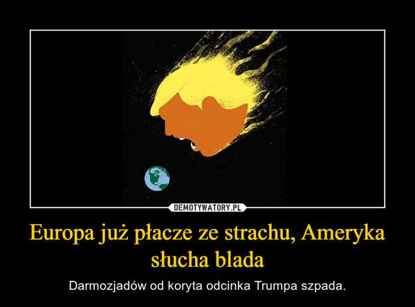 Europa już płacze ze strachu, Ameryka słucha blada – Darmozjadów od koryta odcinka Trumpa szpada.