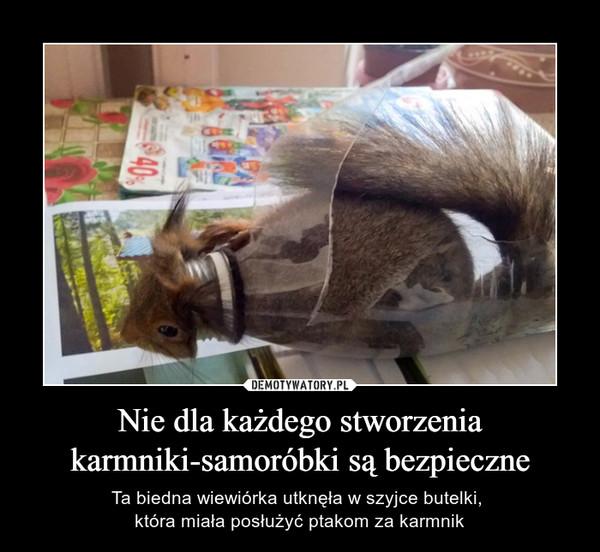 Nie dla każdego stworzeniakarmniki-samoróbki są bezpieczne – Ta biedna wiewiórka utknęła w szyjce butelki, która miała posłużyć ptakom za karmnik