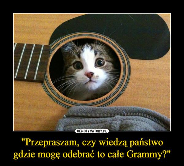 """""""Przepraszam, czy wiedzą państwogdzie mogę odebrać to całe Grammy?"""" –"""