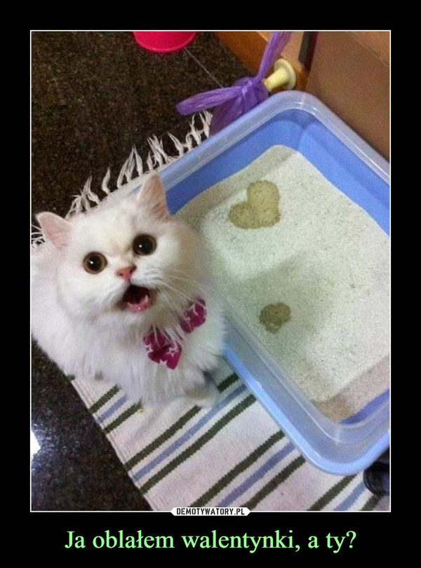 Ja oblałem walentynki, a ty? –