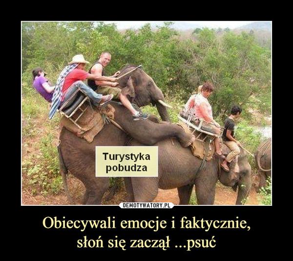 Obiecywali emocje i faktycznie,słoń się zaczął ...psuć –