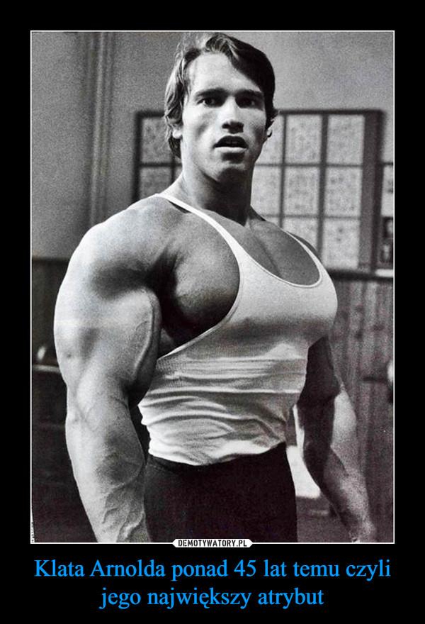 Klata Arnolda ponad 45 lat temu czyli jego największy atrybut –