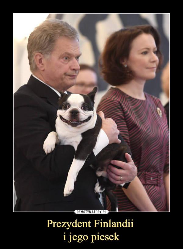 Prezydent Finlandii i jego piesek –