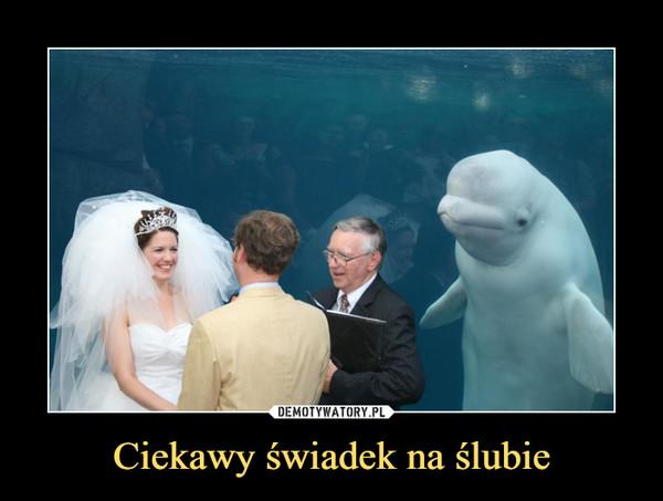 Ciekawy świadek na ślubie –