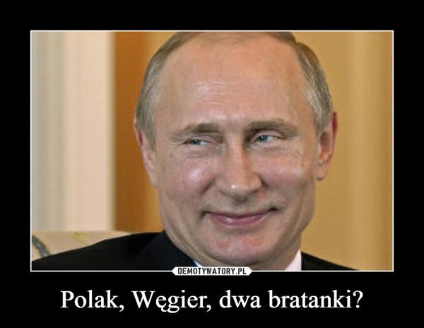 Polak, Węgier, dwa bratanki? –
